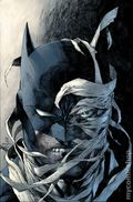 Batman The Hush Saga Omnibus HC (2018 DC) 1-1ST