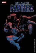 Black Panther (2018 7th Series) 17